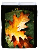 Autumn Blaze Duvet Cover by JAMART Photography