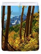 Autumn Brilliance 2 Duvet Cover