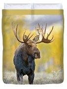 Autumn Bull Moose Duvet Cover