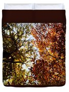 Autumn Chestnut Canopy   Duvet Cover