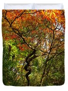 Autumn Color At Old Woman Creek 2 Duvet Cover