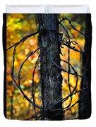 Autumn Colors 1 Duvet Cover