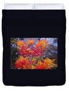Autumn Colors - 113 Duvet Cover