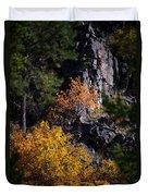 Autumn Colors 2 Duvet Cover