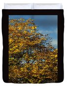 Autumn Colors 5 Duvet Cover