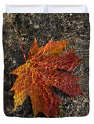 Autumn Colors And Playful Sunlight Patterns - Maple Leaf Duvet Cover