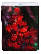 Autumn Colors Early Duvet Cover