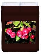 Autumn Crab Apples Duvet Cover