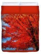 Autumn Fire Duvet Cover