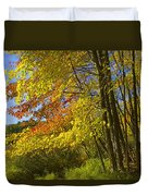 Autumn Forest Scene In West Michigan Duvet Cover