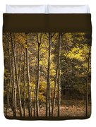 Autumn Forest Scene With Birches In West Michigan Duvet Cover