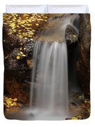 Autumn Gold And Waterfall Duvet Cover by Leland D Howard