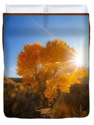 Autumn Golden Birch Tree In The Sun Fine Art Photograph Print Duvet Cover