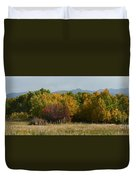 Autumn In Idaho Duvet Cover