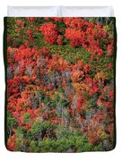 Autumn In The Wasatch Range Duvet Cover