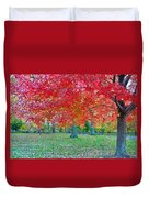 Autumn In Central Park Duvet Cover