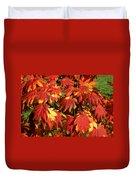 Autumn Leaves 08 Duvet Cover