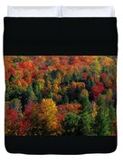 Autumn Leaves Vermont Usa Duvet Cover