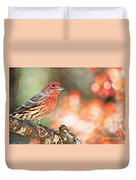 Autumn Male House Finch 1 Duvet Cover