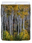 Autumn On Mcclure Pass Duvet Cover