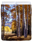 Autumn Paint Chama New Mexico Duvet Cover
