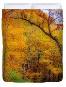 Autumn Peak Colors Duvet Cover
