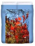 Autumn Reach  Duvet Cover