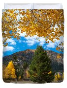 Autumn Scene Framed By Aspen Duvet Cover by Cascade Colors