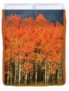 Autumn Splender  Duvet Cover