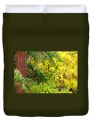 Autumn Splendor 14  Duvet Cover