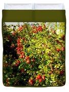 Autumn Splendor 5 Duvet Cover