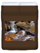 Autumn Stream North Georgia Duvet Cover