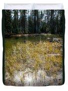 Autumn Sun On Mountain Pond Duvet Cover