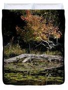 Autumn Swamp Duvet Cover