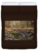 Autumn Tributary Path Duvet Cover