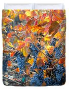 Autumn Vineyard Sunlight Duvet Cover