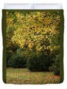 Autumn's Wondrous Colors 4 Duvet Cover
