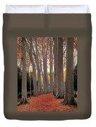 Avenue Of Plain Trees Duvet Cover