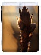 Azalea Flower Bud Sunrise - 1 Duvet Cover