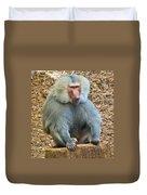 Baboon On A Stump Duvet Cover