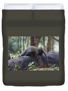 Baboon Sleeping Duvet Cover