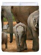 Baby African Elephants II Duvet Cover