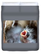 Baby Bird Duvet Cover