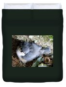 Baby Bird Learns A Lesson Duvet Cover
