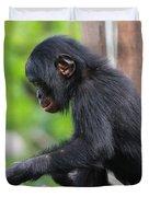 Baby Bonobo Duvet Cover