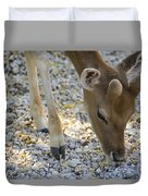 Baby Deer Duvet Cover