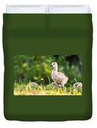 Baby Duckling In The Morning Light Duvet Cover