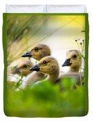 Baby Ducklings Duvet Cover