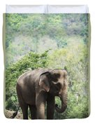 Baby Elephant Chiang Mai, Thailand Duvet Cover