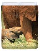 Baby Elephant Feeding Duvet Cover